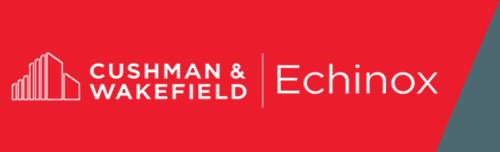 LOGO DTZ Cushman Wakefield Echinox